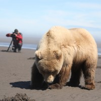 v_25883_01_Andreas_Kieling_Alaska_2020_1_Gotha.jpg