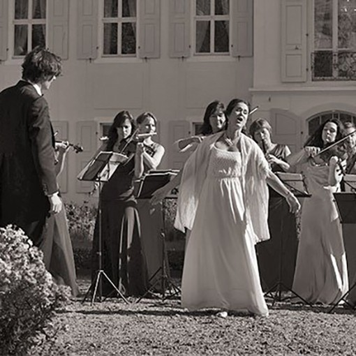v_24426_01_Strauss_Revue_2019_1_Theater_Arnstadt.jpg