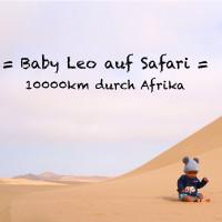 v_27864_01_Baby_Leo_auf_Safari_2020_1_Herbstlese_Martin_Renius.jpg