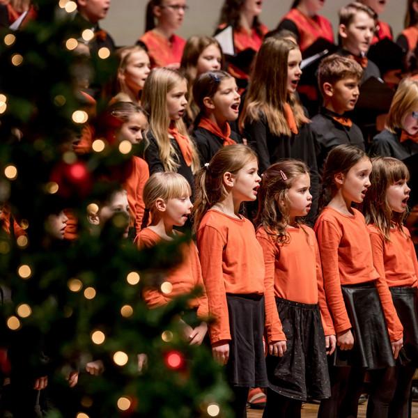 Christmas - Navidad - Jul